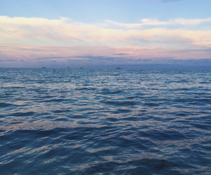 beach, sun, and blue image
