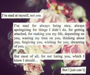 love, quote, and mad image