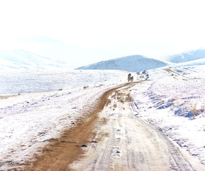 cold, landscape, and mongolia image