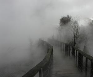 pale, bridge, and fog image