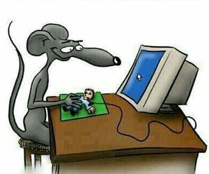 funny, human, and mouse image