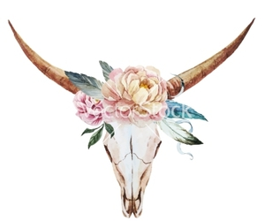 bull, indie, and nature image