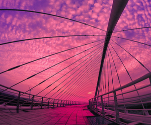 pink, beautiful, and sky image