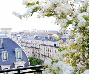 paris, city, and beautiful image