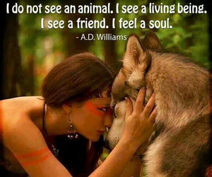 animals, feeling, and quotes image