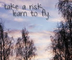 fly, text, and quote image