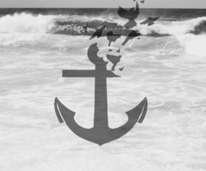 anchor and bird image