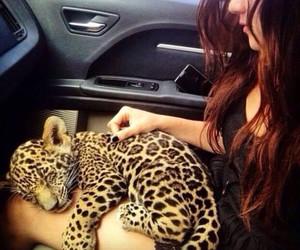 animal, girl, and luxury image