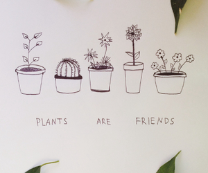 draw, drawing, and plants image