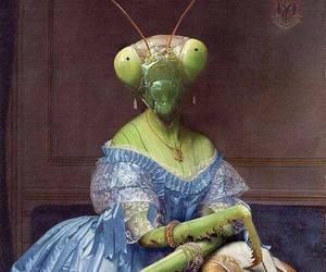 animal, art, and weird image