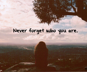 quote, never, and forget image