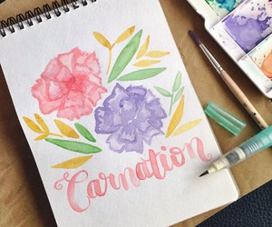 art, carnation, and pretty image