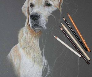 art, dog, and drawing image