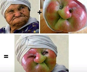 funny, apple, and lol image
