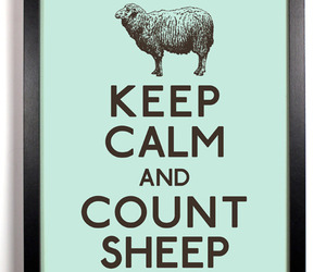 count, keep calm, and sheep image