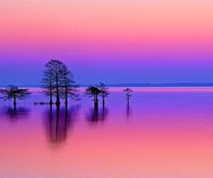 beautiful, colorful, and pink and blue image