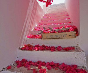 beautiful, stairs, and flowers image
