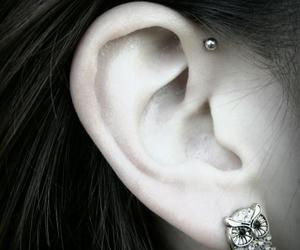 helix, tattoo, and ear piercing image