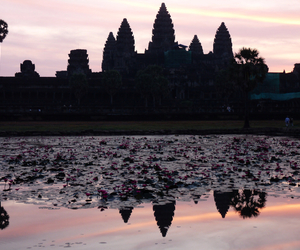asia, Cambodia, and flowers image