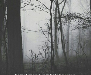 sad, black and white, and forest image