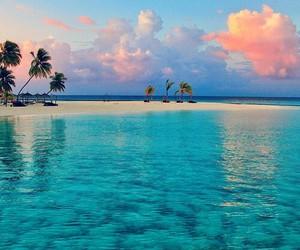 beach, beautiful, and bikini image
