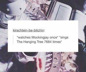 movie, song, and the hunger games image