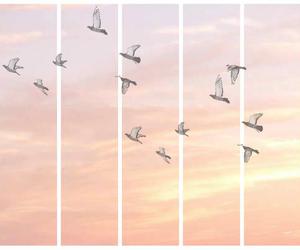 bird, sky, and pink image