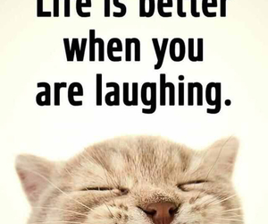 laughing, life, and simple image