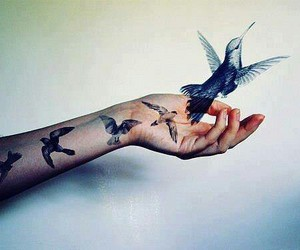 bird, tattoo, and hand image