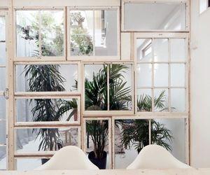 plants, theme, and interior image