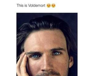 voldemort, harry potter, and Hot image