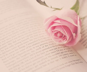 book, pink, and rose image