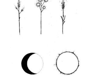 art, moon, and plant image