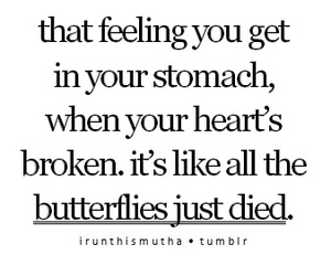 butterfly, love, and broken image