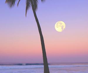 moon, beach, and summer image
