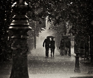 rain, photography, and black and white image