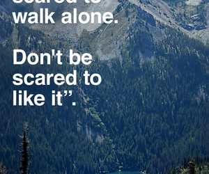 quote, life, and scared image