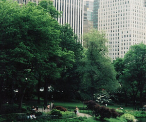 new york, city, and green image