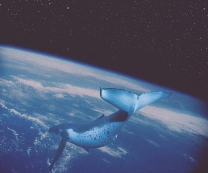 whale, space, and earth image