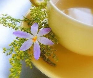 tea, flowers, and yellow image