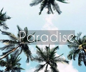 fun, paradise, and summer image