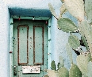 indie and door image