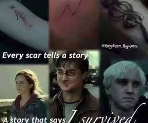 harry potter, scars, and hermione granger image