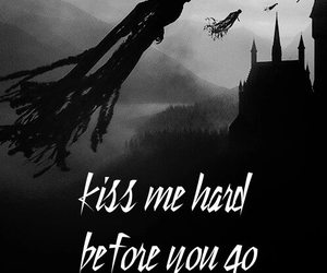 funny, summertime sadness, and harry potter image