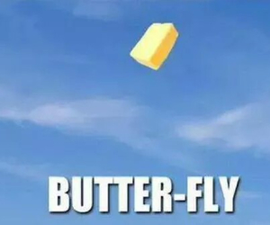 funny, butterfly, and butter image
