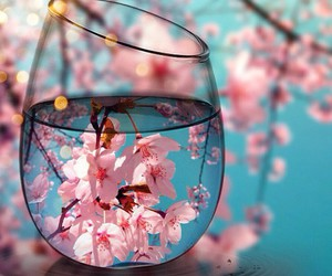 flowers, pink, and glass image