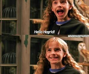 hogwarts and love image