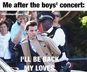 concert, louis tomlinson, and boys image