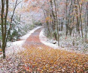 nieve and paisajes image