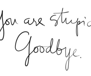 stupid, goodbye, and quote image